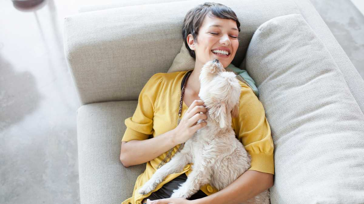 How to show your pet love without dishing out treats
