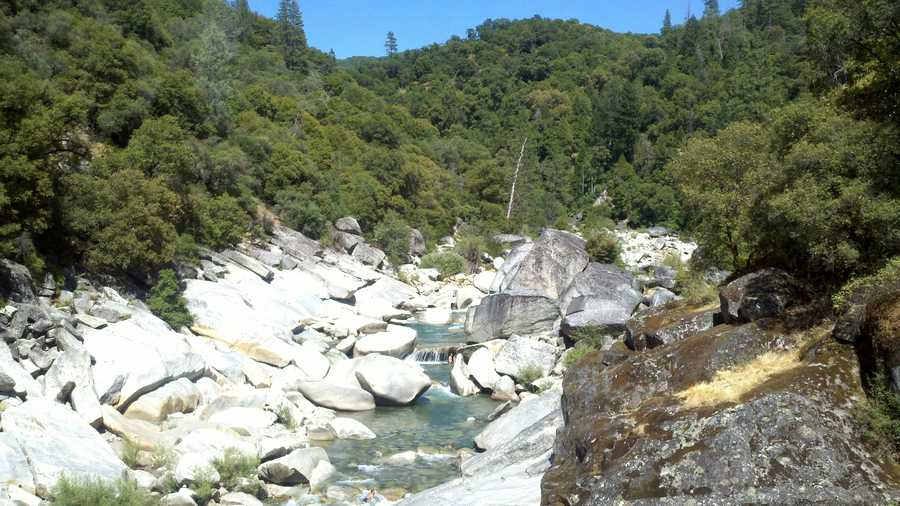 Fish and Game authorities say the mountain lion attack took place off a tributary of the Yuba River.