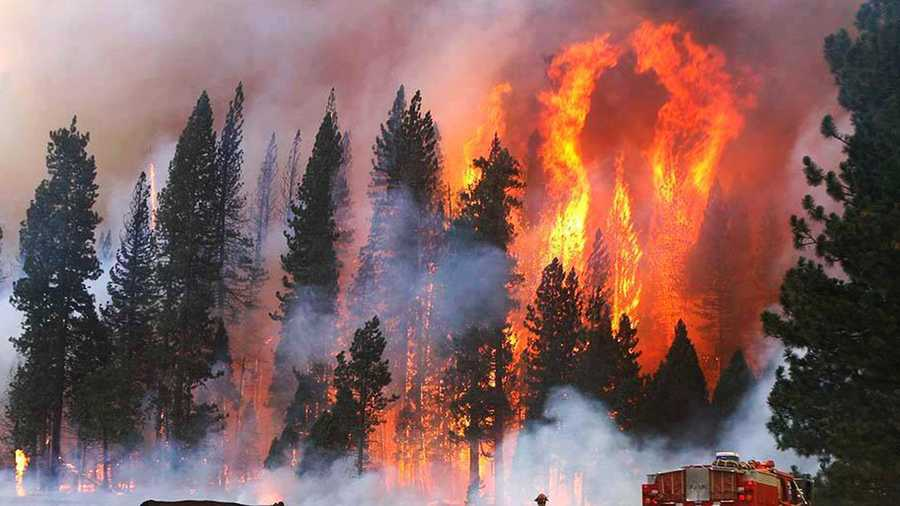 The Rim Fire burned 257,000 acres, or 402 square miles in Yosemite and Stanislaus national forests.
