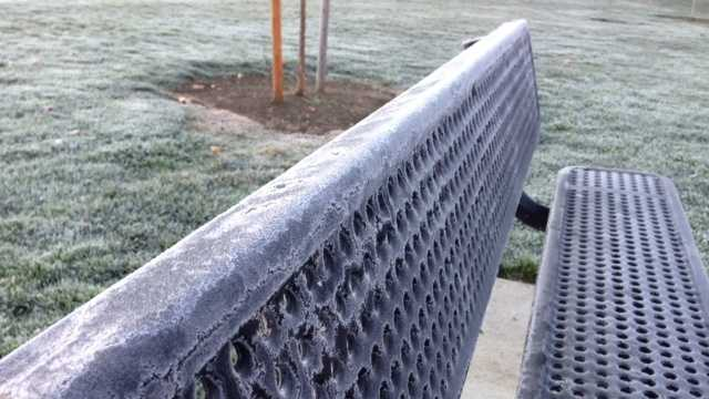 From Modesto to Auburn, record-breaking temperatures hit many parts of the Valley. See the effects of the cold snap in these photos.