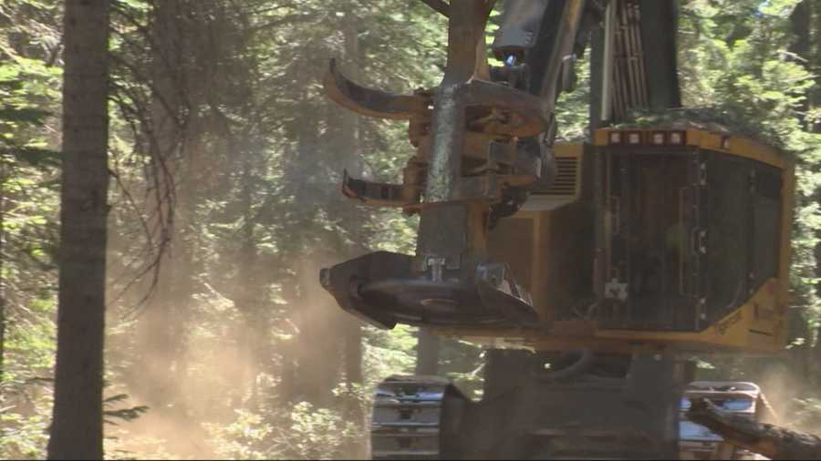 KCRA investigates found that California's fire prevention fee, which is meant for prevention and education, is benefiting a Yuba County logging company.