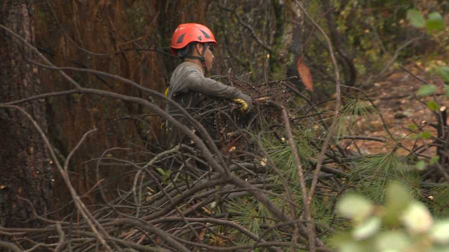 Grass Valley business Luna's Property Maintenance helped a 90-year-old Applegate man by clearing brush and at-risk tree branches when Cal Fire did not give out funds to help individual homeowners.