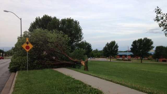 Storms knock over a tree near the Liberty Community Center.