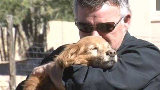 A dog lost for months in Santa Fe is back home again.