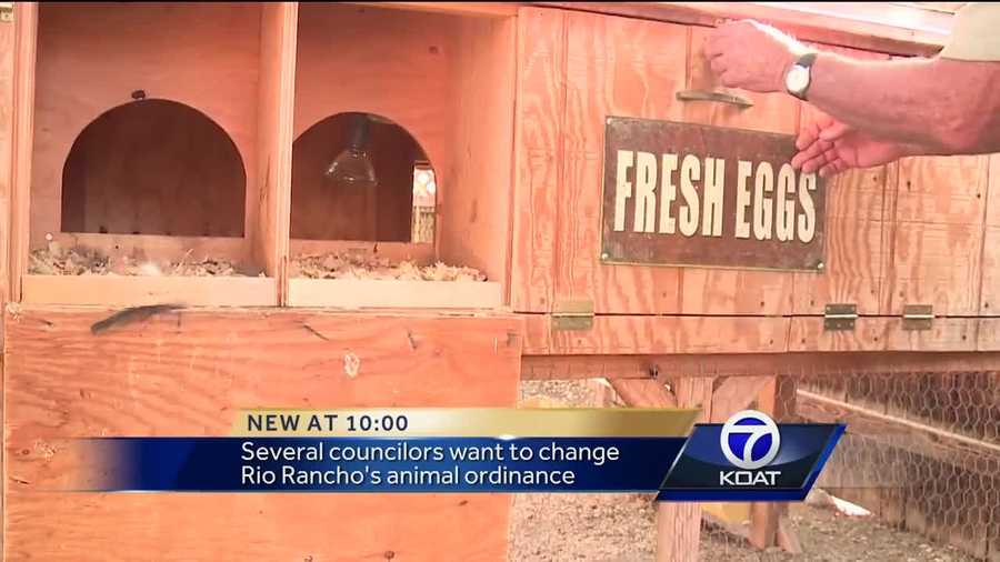 Rio Rancho residents pushing to own backyard chickens hit a snag Wednesday.