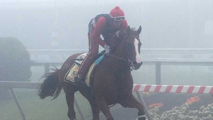 May 15: Kentucky Derby (G1) winner California Chrome is being treated for the recurrence of a minor throat irritation that his connections say will not affect his preparation for the 139th Preakness Stakes (G1) at Pimlico Race Course Saturday.