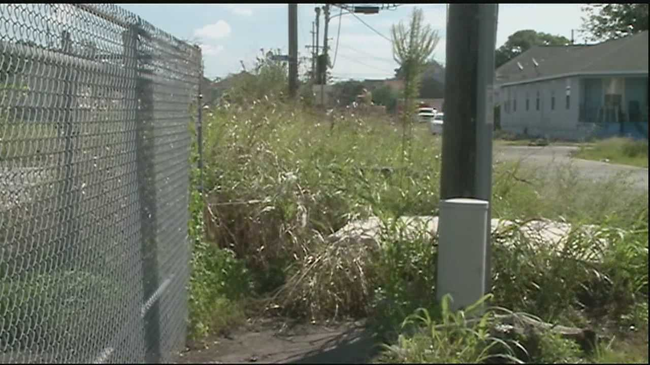 There were more than 3,000 calls to the city last year about overgrown lots. Now a new partnership is tackling the high grass plus putting teens at the Covenant House to work.