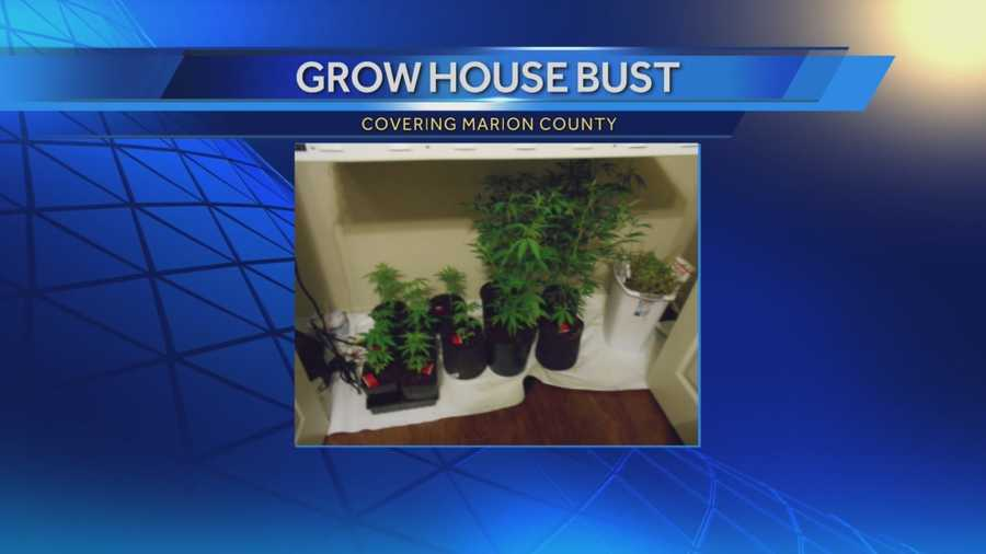 A home invasion in Marion County leads to a marijuana grow house bust. Deputies say they found more than 30 marijuana plants inside one of the homes that had been broken into.