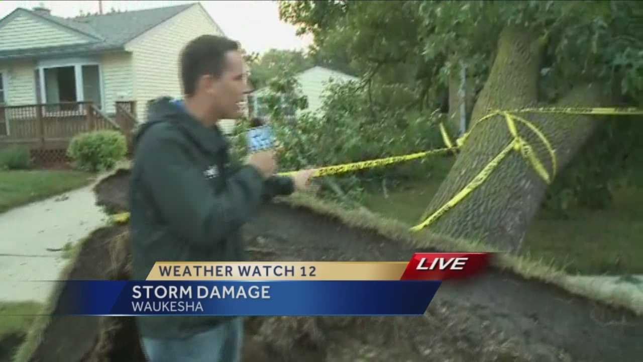 A strong thunderstorm brought high winds and toppled trees in Waukesha and Racine counties Tuesday night.