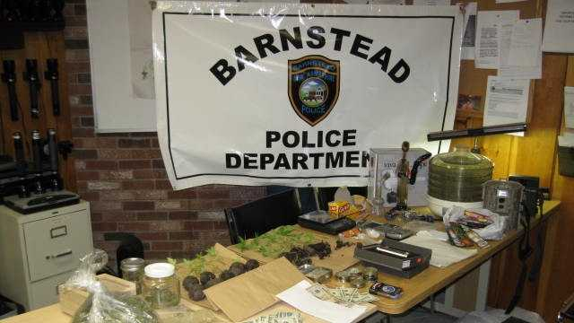 Local and federal law enforcement officers seized marijuana from an apparent growing operation in Barnstead, say authorities.