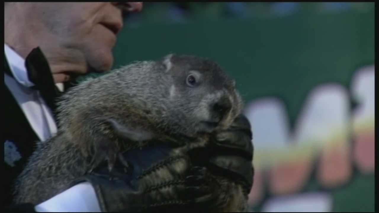 Merrimack police say they'll extradite Punxsutawney Phil, whenever he is found. WMUR's Jean Mackin reports.