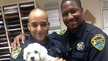 Boynton Beach police officers hold 'Fluffy,'the dog allegedly stolen by a pet sitter found on Craigslist.