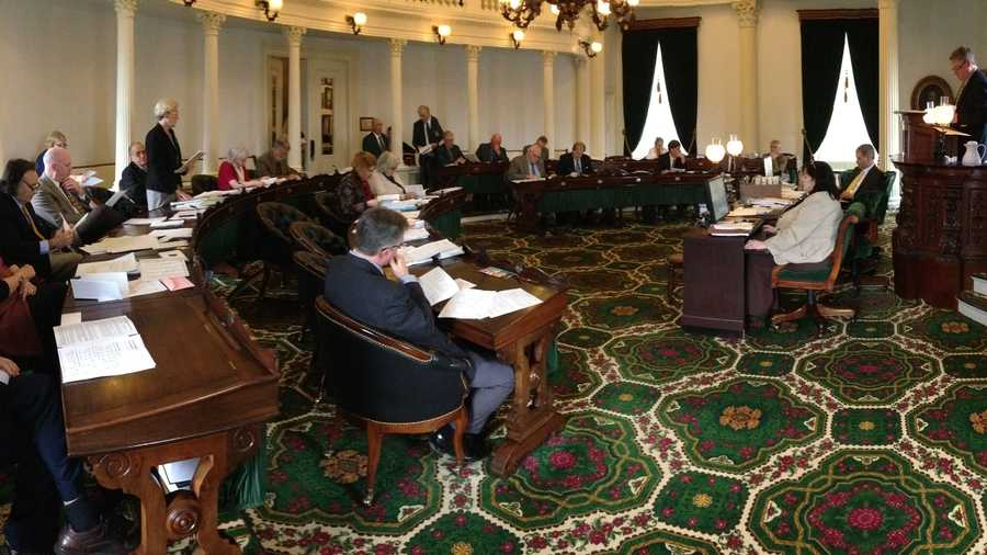 Sen. Jane Kitchel presents elements of the proposed FY2015 budget on the Senate floor Monday afternoon.