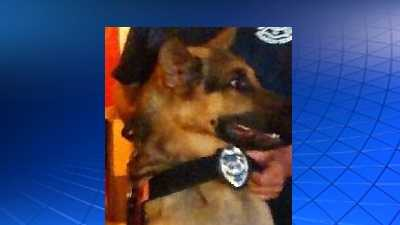 Duke was a member of the K9 search and rescue team at the Youngwood VFD.