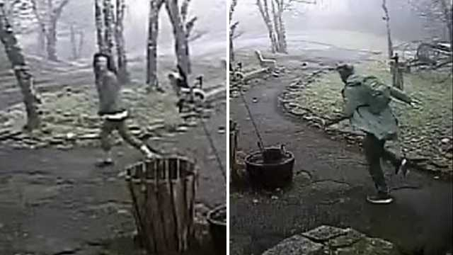 Surveillance images of suspects in Land of Oz break-in