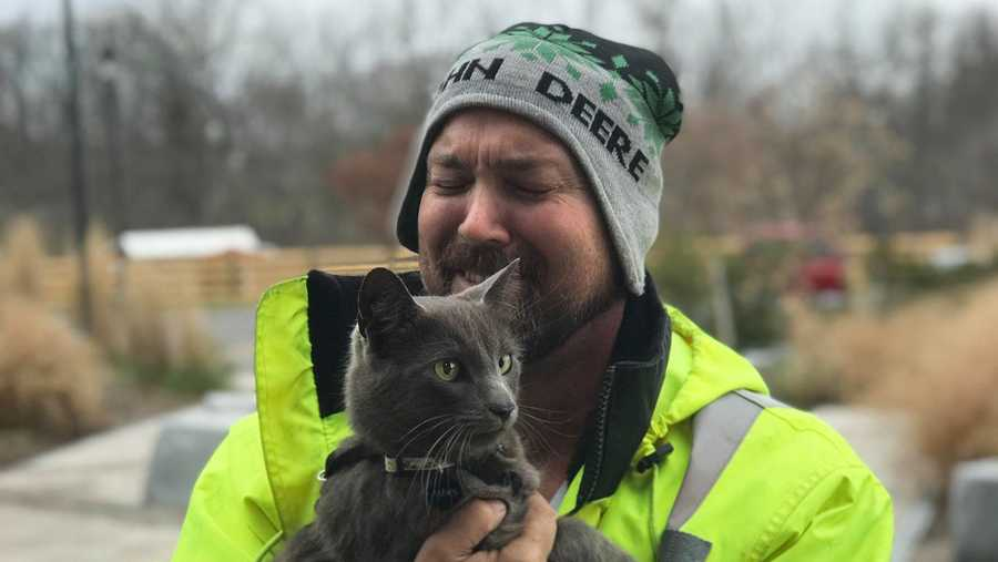 Georgia man reunited with lost cat