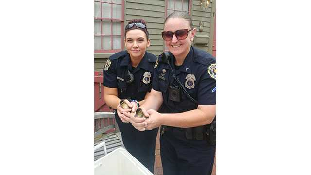 Officers save ducklings