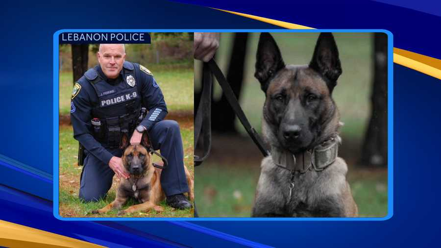K-9 Blesk and Officer Jeremy Perkins