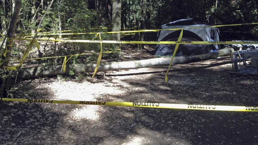 This July 2012 photo provided by attorney Tim Tietjen shows the scene where a boy was crushed and severely injured by a falling tree in San Mateo County Memorial Park in Loma Mar in Northern California. Zachary Rowe, the boy who lost his leg and part of his pelvis after the tree fell on his tent during a camping trip at the public park will receive $47.5 million from a California municipality and utility in a lawsuit settlement, the attorney said Wednesday, June 27, 2018.
