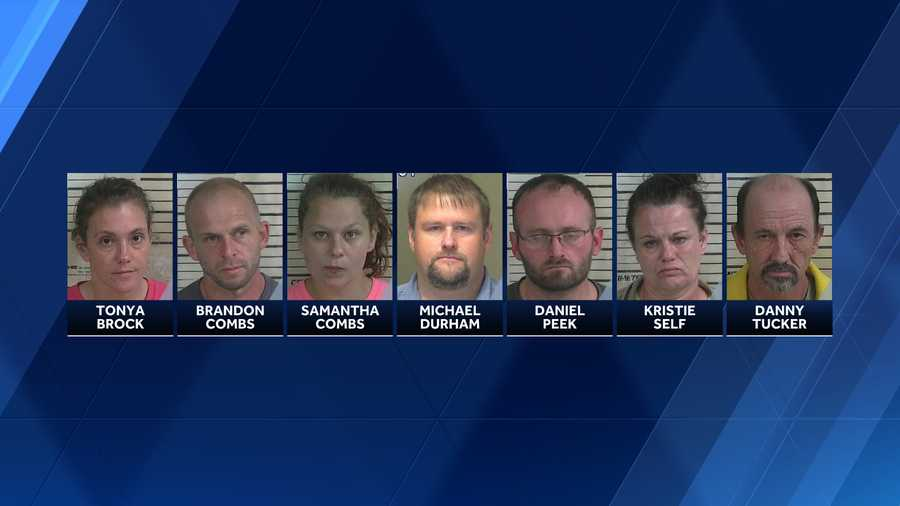 Cullman County drug roundup