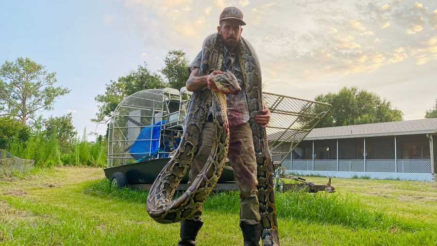 Mike Kimmel is pictured with the 17-foot python he caught draped around his neck.