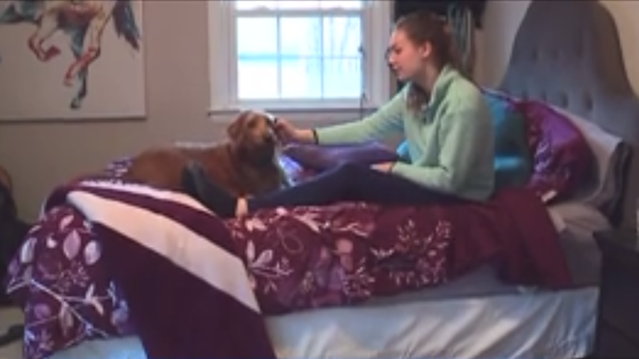 A teen's puppy alerted her to the fact that her grandmother had collapsed in the kitchen.