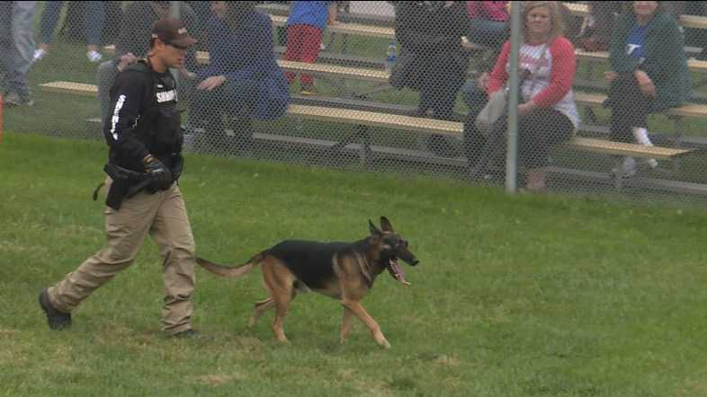 K9 Competition