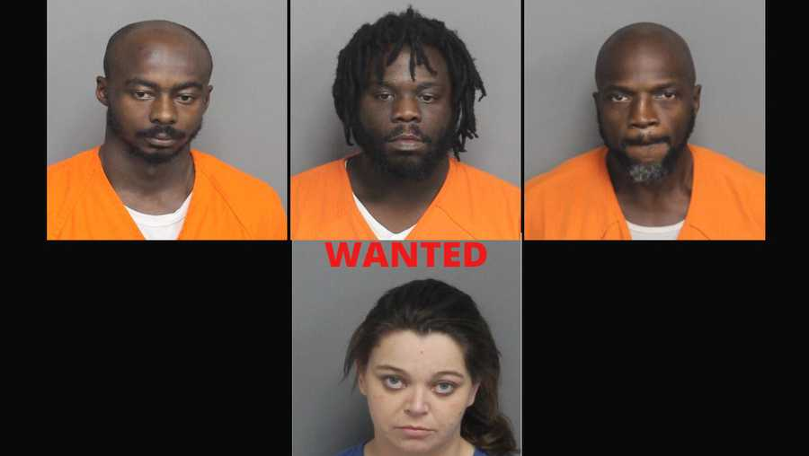 Drug bust in Gray Court suspects including wanted woman