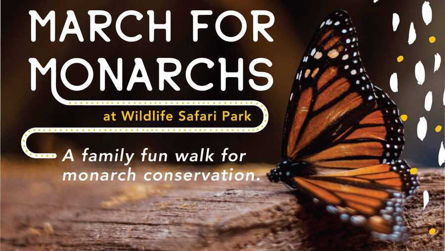 March for Monarchs