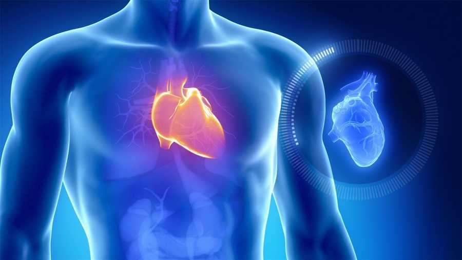 A tiny new device is offering hope of a better life for people with severe heart failure, reducing hospitalization rates and improving mortality risk within two years of treatment, a new study finds.