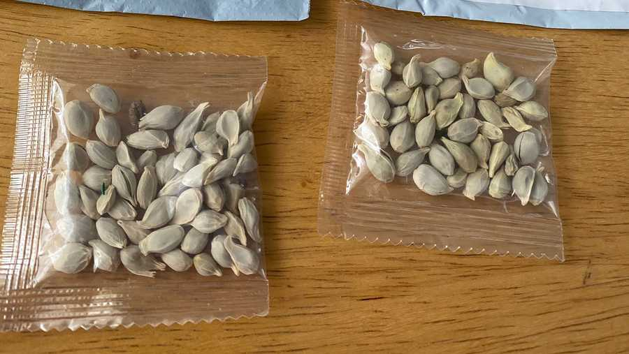 In this photo posted on Facebook by the Washington State Department of Agriculture, packages of unidentified seeds sent to the U.S. from China sit on a table.