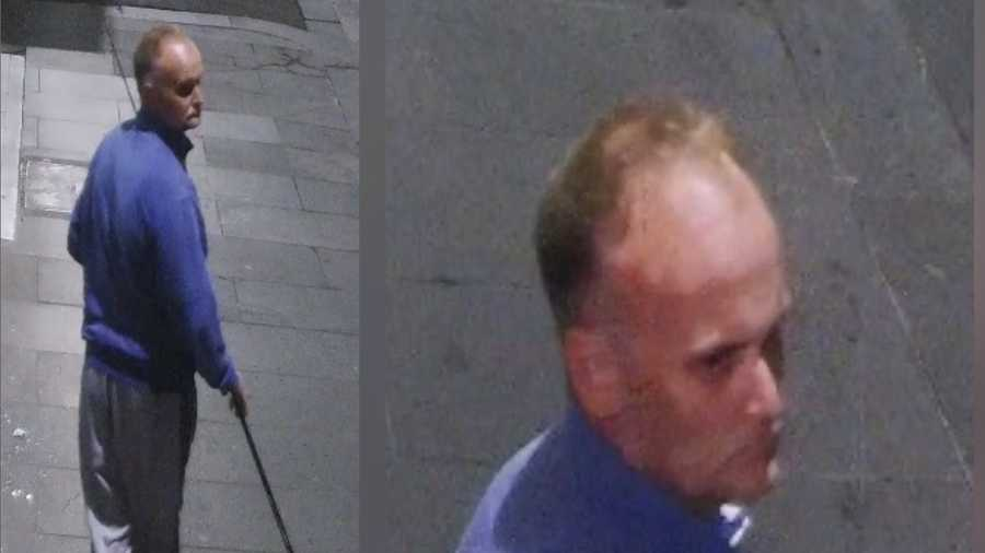 Melbourne police are searching for a man who was captured on security footage using a fishing rod to remove a necklace from a mannequin.