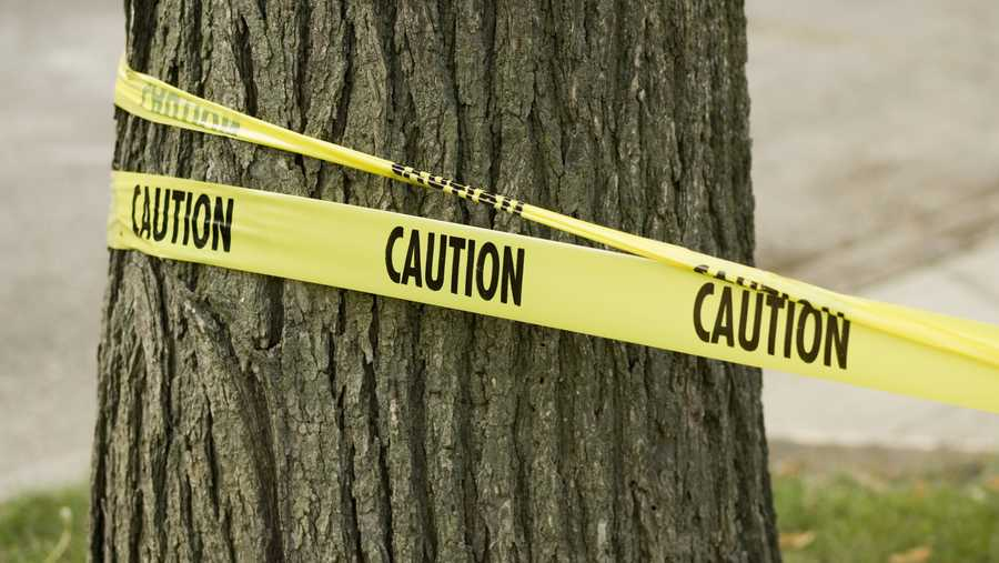 stock photo of caution tape wrapped around tree