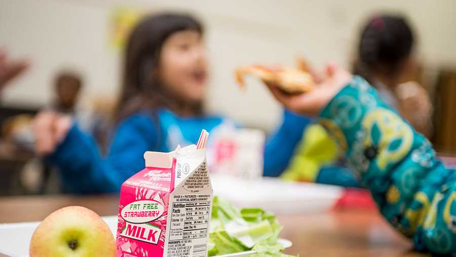 Students eat lunch as part of the National School Lunch Program, offering free or discounted lunches for low-income students.