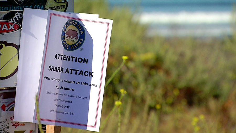 Officials closed San Onofre State Beach Saturday, April 29, 2017, after a woman was attacked by a shark. Signs were posted along the beach, warning visitors to stay away.