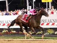 War of Will wins Preakness