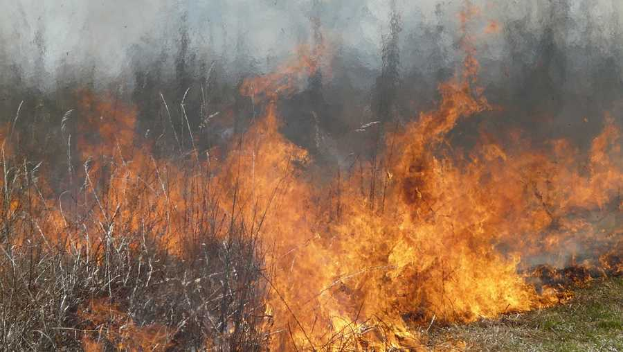 Red Flag Alert issued to prevent wildfires
